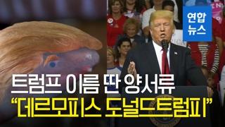 """[영상] """"데르모피스 도널드트럼피""""…트럼프 대통령 이름 딴 양서류 등장"""