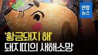 [영상] '풍요와 복의 상징'… 황금돼지띠의 새해 소망은?