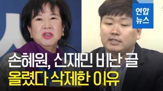 [영상] 손혜원, 페이스북에 신재민 비난 글 올렸다 삭제…그 이유는?