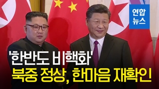 [영상] 북중 정상, 4차 회담서 한반도 비핵화 '한마음'