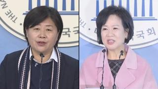 """민주 """"손혜원ㆍ서영교 진상조사, 이번 주 마무리"""""""