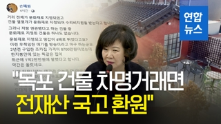"""[영상] '투기 의혹' 손혜원 """"목포 건물 차명거래면 전재산 국고 환원"""""""
