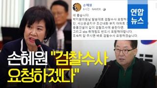 """[영상] 손혜원 """"검찰수사 요청하겠다…관련 단체들 조사 응해야"""""""