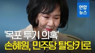 [영상] '목포 투기 의혹' 더불어민주당 손혜원 의원 탈당키로…