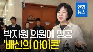 [영상] '탈당 선언' 손혜원 의원, 박지원 '배신의 아이콘' 맹공