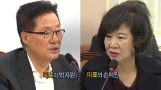 [영상구성] 마포의 손혜원, 목포의 박지원