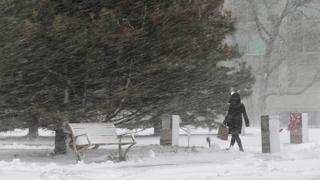미국 한파에 눈폭풍 강타…한인 초등생 눈에 파묻혀 사망