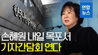 [영상] '목포 투기 의혹' 손혜원, 내일 목포서 기자간담회 열어
