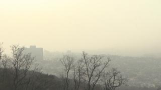 눈 없는 겨울…메마른 공기에 미세먼지 기승