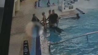 부산 호텔 수영장서 초등생 의식 잃은 채 발견