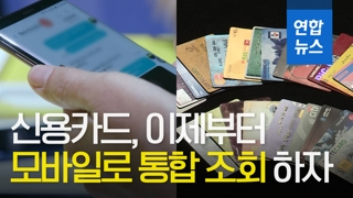 [영상] 여러 신용카드 사용 액수, 모바일로 한눈에 알 수 있다