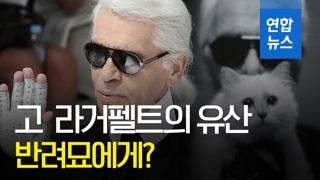 [영상] 고 라거펠트의 유산, 반려묘 '슈페트'에게 갈까?