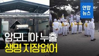 [영상] 농협 목우촌 음성공장서 암모니아 가스 누출…22명 병원 이송