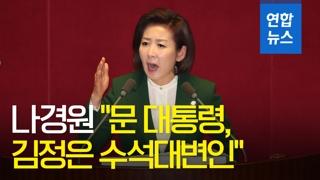 """[영상] 나경원 """"문 대통령, 김정은 수석대변인""""…정국 급랭"""
