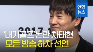 """[영상] 배우 차태현 '내기골프'논란… """"모든 방송 하차"""""""