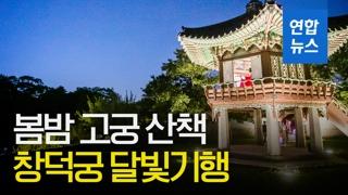 [영상] '창덕궁 달빛기행'…봄밤에 고궁 산책 어때요?