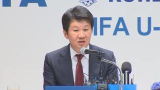 축구협회, 2023년 여자월드컵 남북 공동유치 의향서 제출