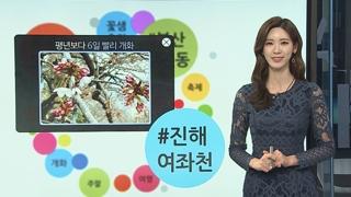 [날씨트리] 남녘에는 벌써 벚꽃이?…부산ㆍ진해 공식 개화