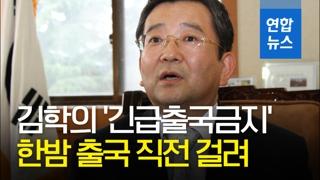 [영상] '별장 성접대 의혹' 김학의, 한밤 출국 시도…긴급출국금지