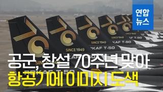 [영상] 블랙이글스 항공기에 이미지 도색한 공군