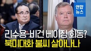 [영상] 리수용·비건 베이징 회동?…북미대화 불씨 살아나나