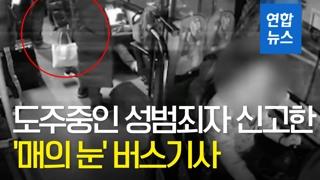 [영상] 도주중인 성범죄자 잡아낸 '매의 눈' 버스기사