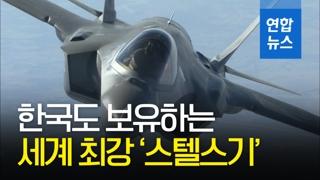 [영상] 한국도 '스텔스 전투기'보유국…F-35A 2대 첫 국내 도착