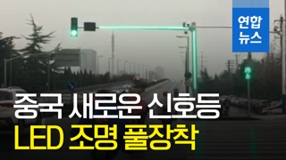 [영상] '교통사고 줄이려나'…중국서 LED 풀장착한 일체형 신호등 등장