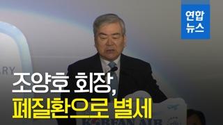 [영상] 조양호 회장 별세…한진家 재판·수사 '올 스톱'