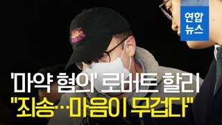 """[영상] '마약 혐의' 로버트 할리 """"마음이 무겁다""""…일부 혐의 인정"""
