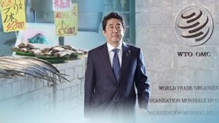 [라이브 이슈] 'WTO 개혁' 목소리 높이는 일본…목적은?