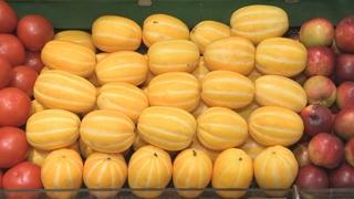 '철 없는' 과일…봄부터 등장한 참외ㆍ수박 인기
