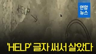 [영상] 악어 들끓는 뻘밭 갇힌 커플, 'HELP' 써서 살았다