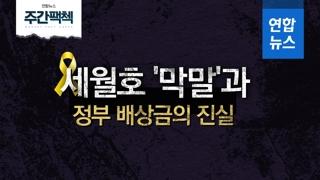 [주간팩첵 EP.07] 세월호 '막말'과 정부 배상금의 진실