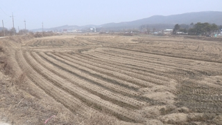용인 처인구 1분기 땅값 1.85%↑…전국 1위