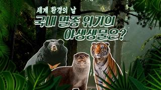 [포토무비] 세계 환경의 날, 국내 멸종 위기의 야생생물은?