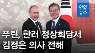 """[영상] 푸틴, 문 대통령 만나 """"김정은, 대북 안전보장이 핵심"""""""