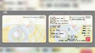 뒷면에 영문…새 운전면허증 이르면 9월 나온다