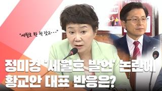 """정미경 """"세월호 한척으로 이긴 문대통령"""" 막말 논란…발언 어땠길래?"""
