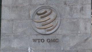 日, '韓 수출규제' WTO 회의에 외무성 경제국장 파견