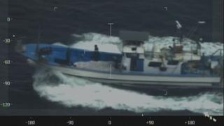 멸종 위기 밍크고래 불법 포획…21명 현장 적발