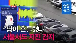 """[영상] 상주서 3.9 지진…""""서울서도 흔들림 감지"""""""