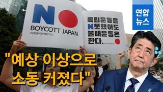 """[영상] """"예상 이상으로 소동 커졌다""""…일본, 수출규제 오판했다?"""