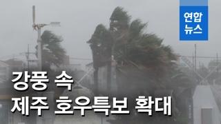 [영상] 태풍 '레끼마' 영향…제주 전역 강풍 동반한 강한 비