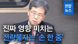 """[영상] 김현종 """"진짜 영향 미치는 일본 전략물자는 '손 한 줌'"""""""