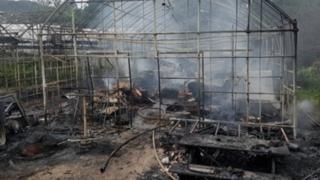 경북 군위 식물원에서 불…여성 한 명 사망