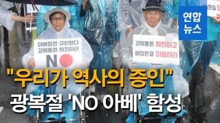 [영상] 빗속에서도 '우리가 역사의 증인'·'NO 아베' 광복절 함성