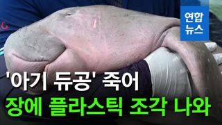 [영상] 태국 '아기 듀공' 죽어…장에 플라스틱 조각 나와