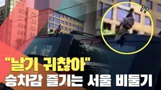 """""""날기 귀찮아""""…차타고 서울 구경하는 비둘기"""