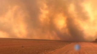 불타는 지구의 허파…브라질 아마존 산불로 신음